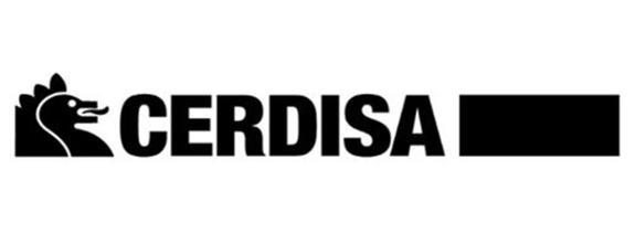 Cerdisa, Carrelage Cerdisa - Neostone - Antracite, devis et vente en ligne à prix discount.